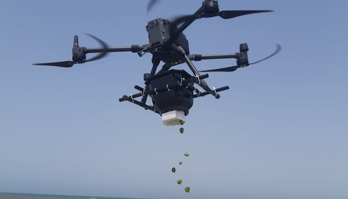 Drones to scatter 1M seeds across Oman wetland reserve