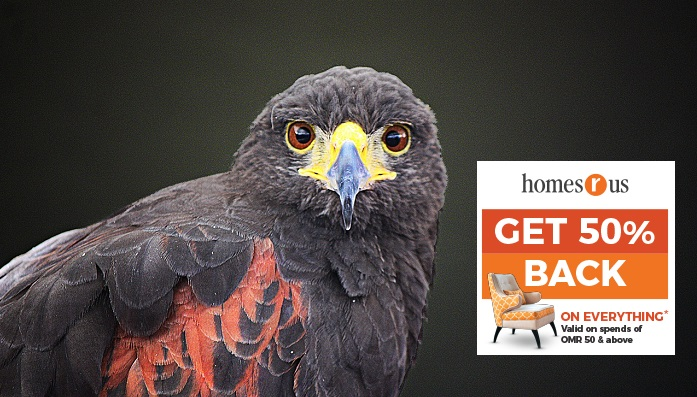 Eye size of birds may predict sensitivity to environmental change