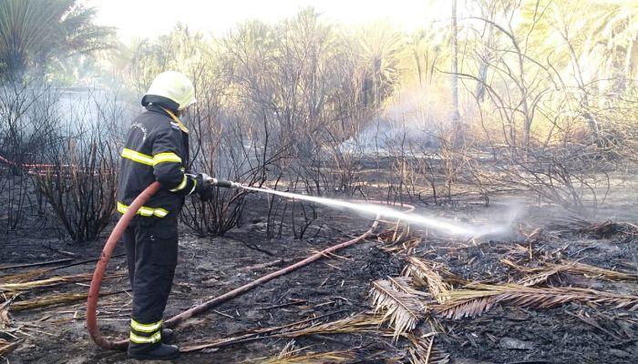 إخماد حريق شب في مزرعة