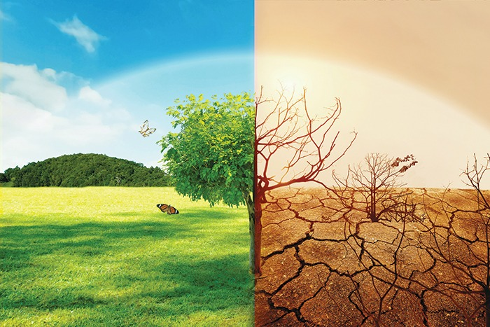 Celebrating World Ozone Day