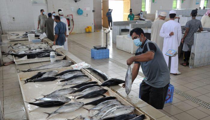 أكثر من 38 ألف طن كمية الأسماك المنزلة بالسلطنة
