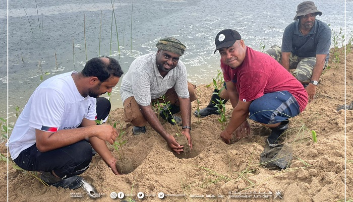 Environment Authority plants over 1,500 saplings in Dhofar Governorate