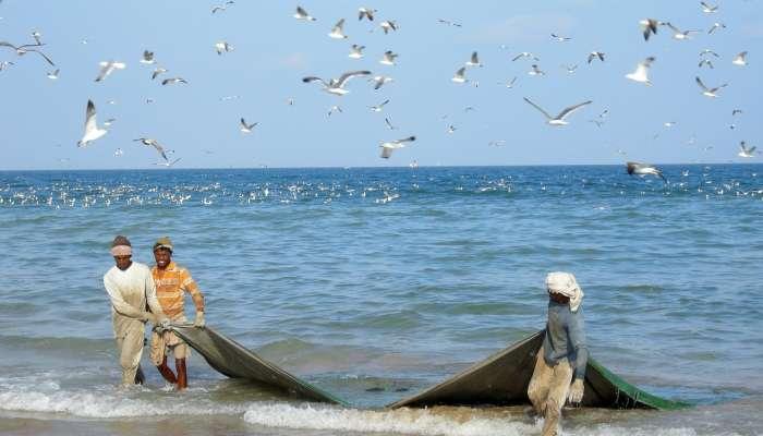 Oman's Agricultural Ministry warns fishermen against debris at sea