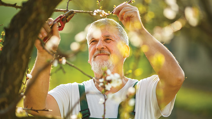 Tips to complete outdoor chores with vigour as you age