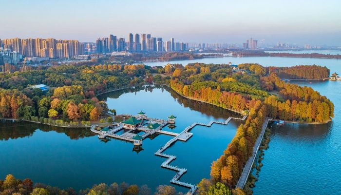 مقالة خاصة: فكر الرئيس الصيني شي حول الحضارة البيئية يلهم العالم لبناء الانسجام بين جميع الكائنات