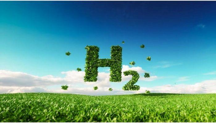 تحالف دولي يسعى لتطوير مشروع الهيدروجين الأخضر والأمونيا الخضراء في صلالة